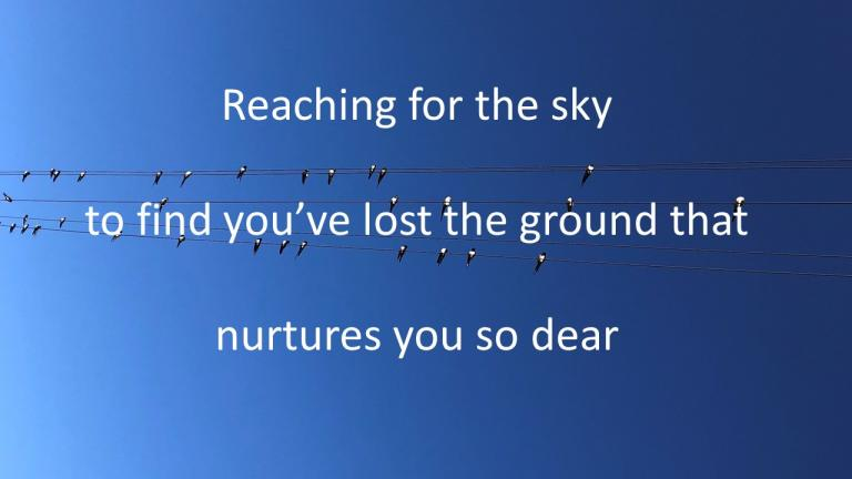 reaching for the sky / to find you've lost the ground that / nurtures you so dear